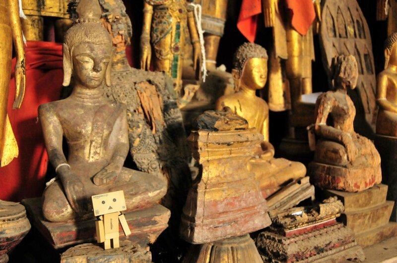 65-Danbo-Luang-Prabang