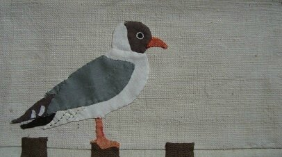 mouette rieuse1