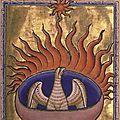 Le phénix, l'oiseau de feu