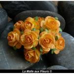 rose orange 15 mm