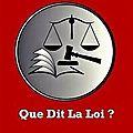 Publication au journal officiel de la loi consacrant un « droit à l'erreur »