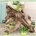 Beautés de la nature #2 : l'arbre à plantes