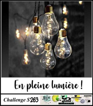 S263-lumière_ampoules
