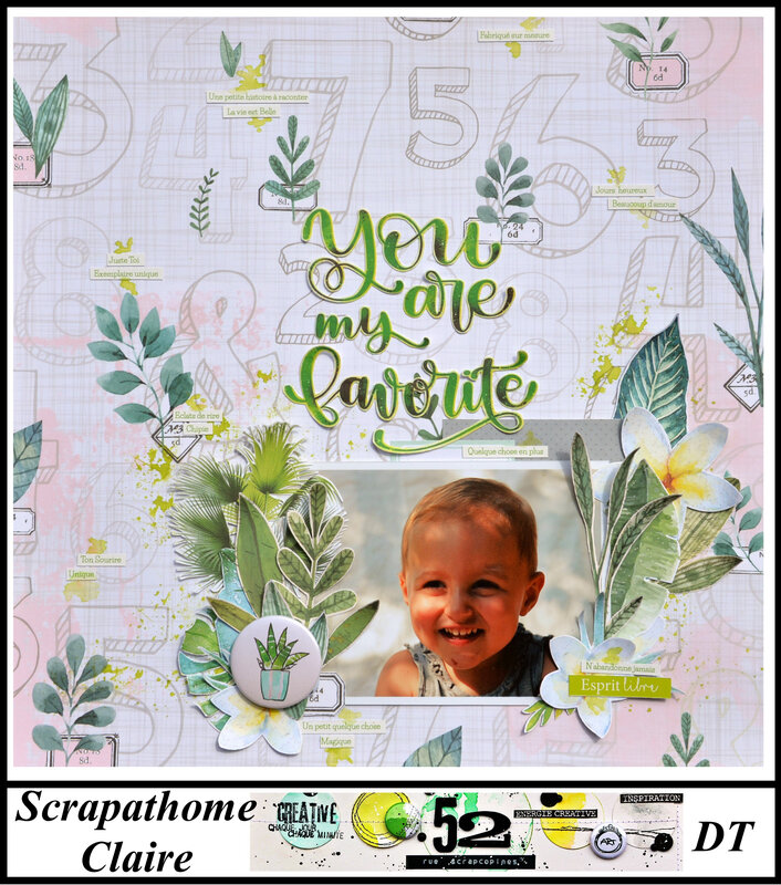 S251 - ambiance tropicale- 52RS- claire scrapathome