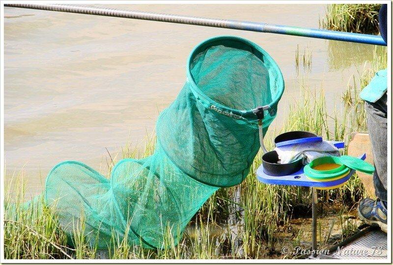 Pêche à l'Etang de la Tour (15)