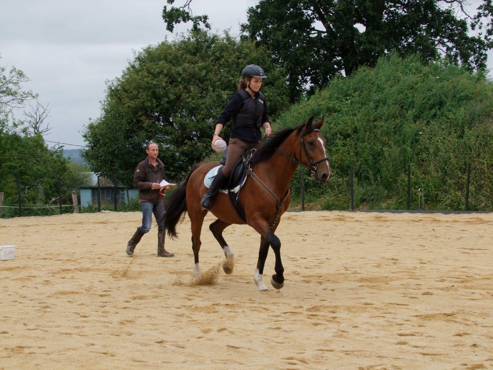 équitation d'extérieur - parcours en terrain varié (138)