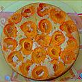 Un gâteau moelleux aux abricots