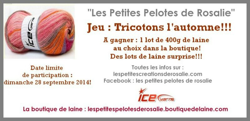 tricotons-lautomne-2014