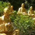 10000 buddhas 009