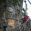 Chapelle dans le chêne d'Allouville