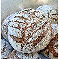 Petits pains au son de blé