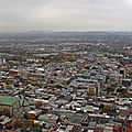 IMG_2007a
