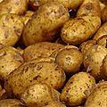 Poêlée de pommes de terre nouvelles, petits pois,carottes, oignon cebette et tofu