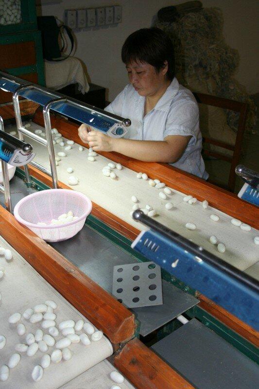 f7a2cd71643d La fabrique de soie - 15 jours en chine