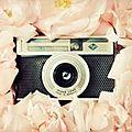 Coup de coeur pour la photographie. ella &