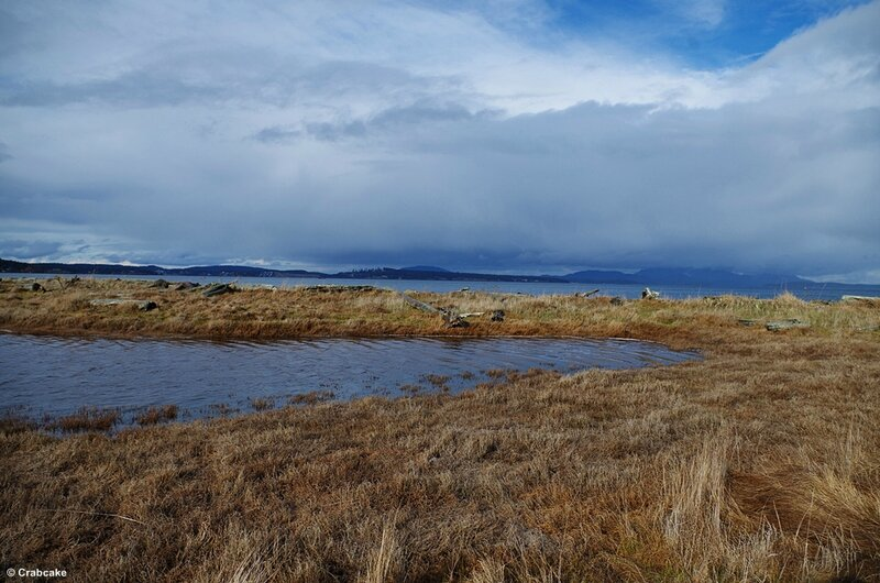Third Lagoon