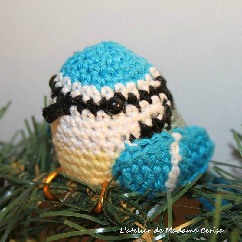 mesange-bleue-carre