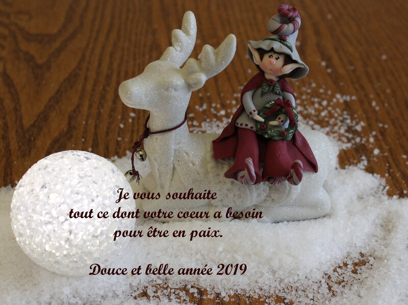 IMG_voeux 20193705