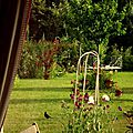 Windows-Live-Writer/jardin_D005/DSCF3916