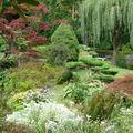 Château de Courances : parc et jardin japonais