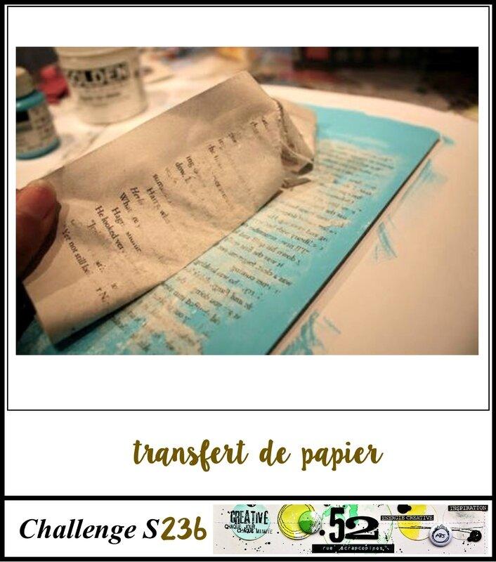 challenge S236