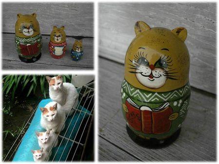 COLLEC CATS (7)