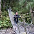 Bridge Track catlins River Lolotte 1