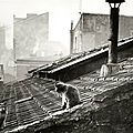 Edouard-Boubat-chat-paris - Copie