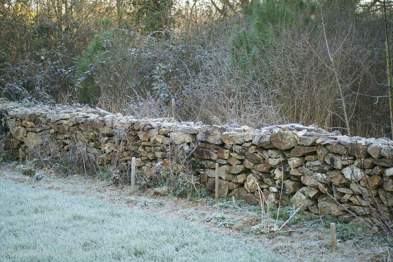 f3 hiver