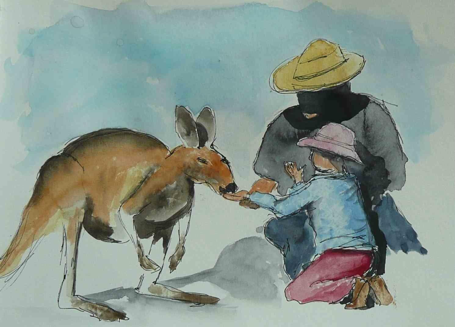 Australie, kangourou-2b