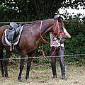 équitation d'extérieur - parcours en terrain varié (11)