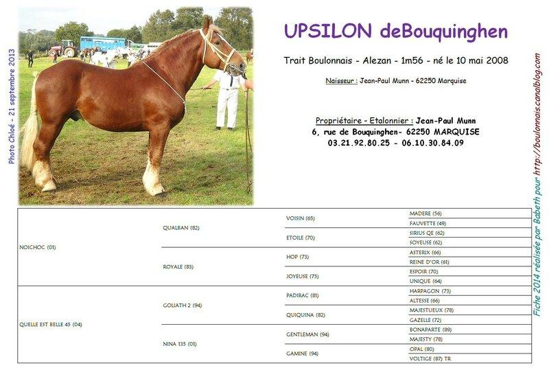 Fiche UPSILON DEBOUQUINGHEN 2014