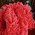 foulard en dentelle corail