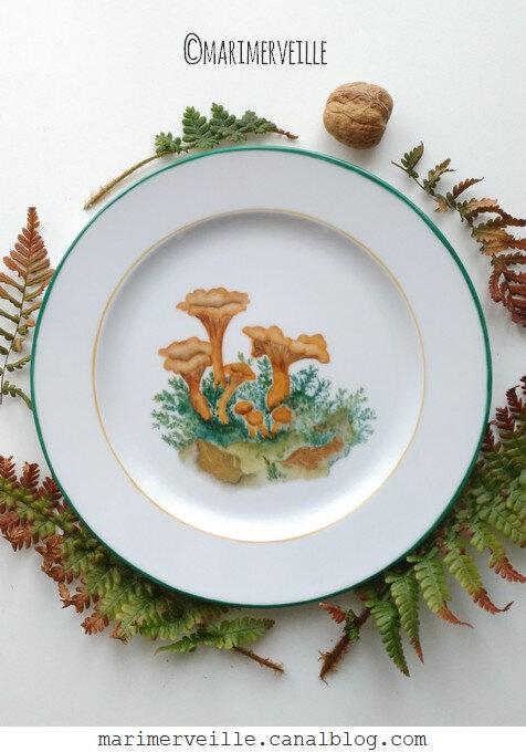assiette aux girolles Marimerveille