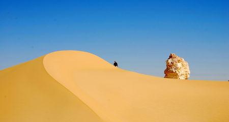 desert_blanc349