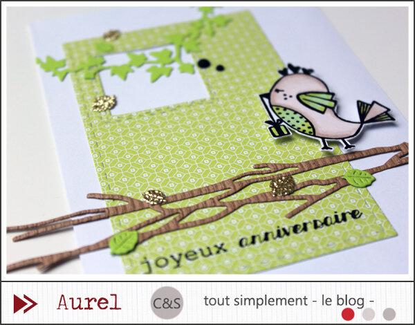 310119 - Carte Joyeux Anniversaire - Mots mêlés #2_blog