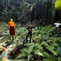 Fete ecologique sur aire - photos