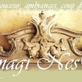 Bannière Imagi' NesS