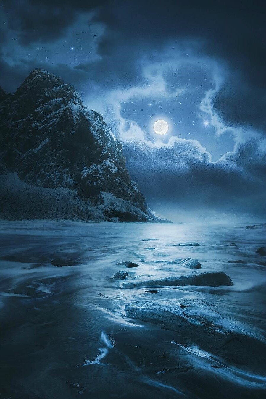 pollution lumineuse biodiversité nocturne