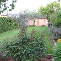 Jardin et vaiselle 002