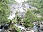 St_Columba_Falls_Nord_Est_Tasmanie__14_