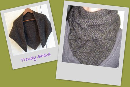 Trendy_Shawl