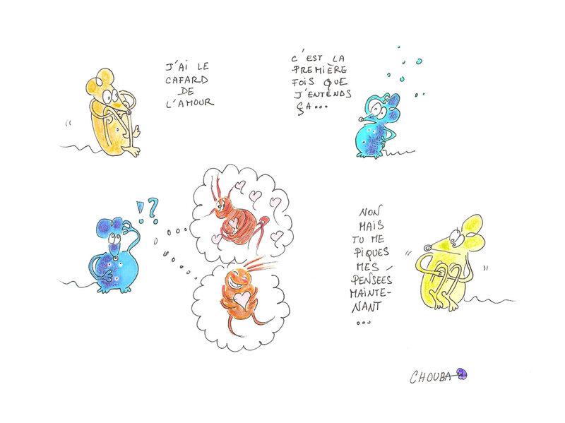 le-cafard-de-l'amour-blog