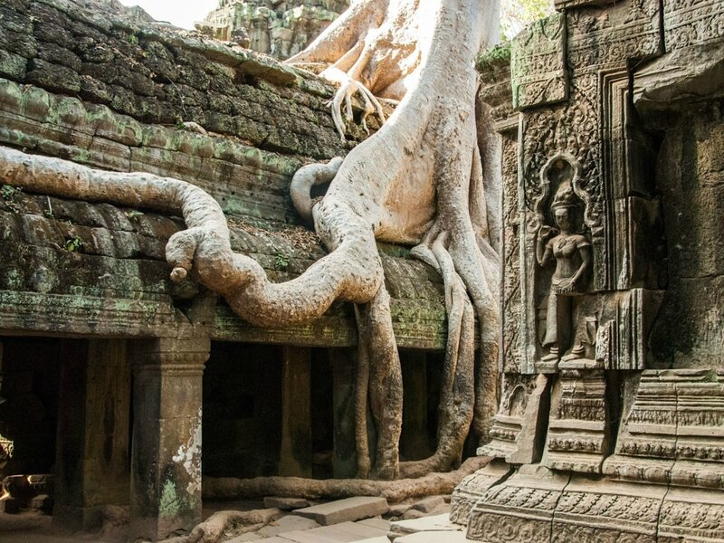 ta-prohm-angkor-siem-reap-cambodia-o-the-location-of-tomb-raider