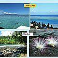 Île de TAHITI (5)