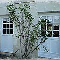 Comment apporter du charme à la façade de votre maison ?