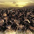 Les chevaux de nos rêves, de françoise peuriot et philippe ploquin