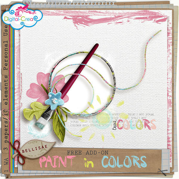 preview_paintincolorsADDON_bellisaedesigns