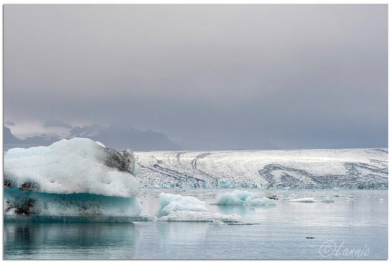 Islande (55) Jökulsárlón_2