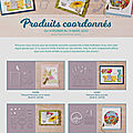 Produits coordonnés au mini-catalogue janvier juin 2020 et à la brochure sale-a-bration